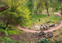 Lost pleasure grounds to open at Walmer Castle